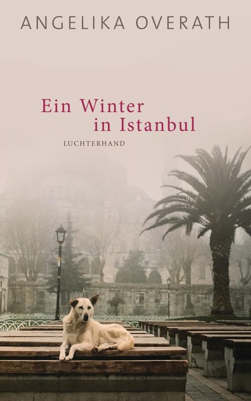 Ein Winter in Istanbul von Angelika Overath